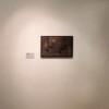 Installation view, The White skin pet National Gallery of Art, Tirana thumbnail